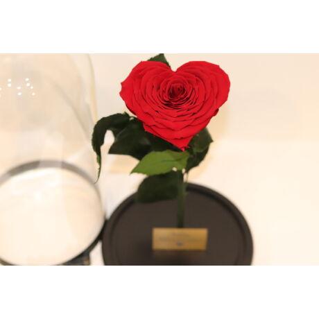 Nagy_Búra_örök_rózsa_szív