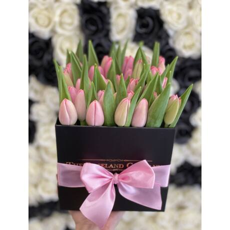 Fekete_kocka_sárga_tulipán