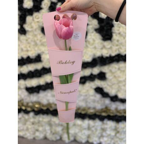 1 szál tulipán Nőnapi dísztartóban